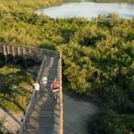 Boca Ciega Millennium Park boardwalk