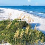 Fort DeSoto Beach, Pinellas County