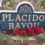 Placido Bayou neighborhood near St. Petersburg, FL